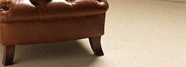 Carpet Inspector